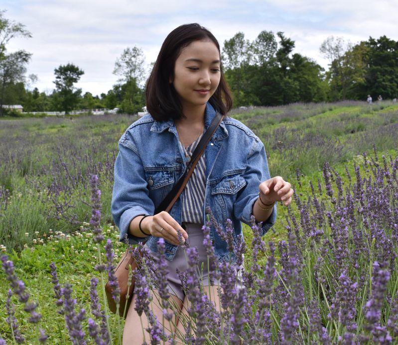 Terre Bleu lavendar farm