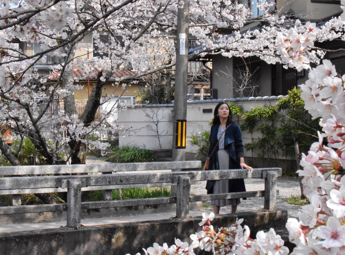 Cherry blossom look in kyoto philosopher's walk, japan