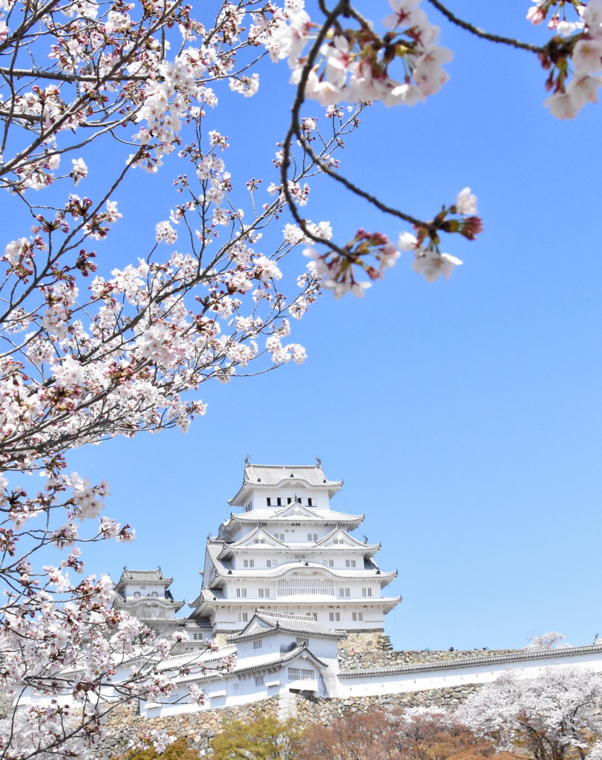 Himeji castle Japan travel journal